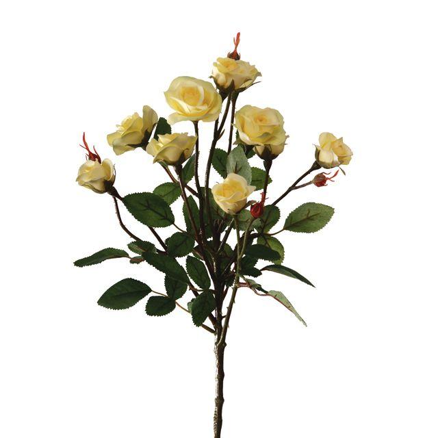 Роза Буша кустовая желтая 56 см