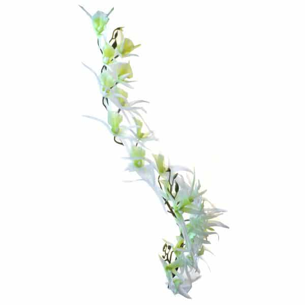 Орхидея Паук белая 138 см