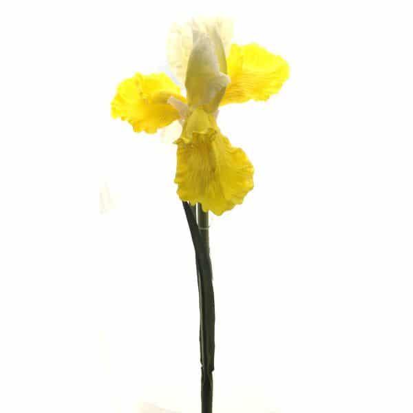 Ирис желтый 84 см