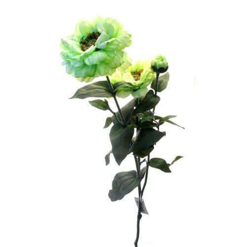 Циния зеленая 80 см живое прикосновение