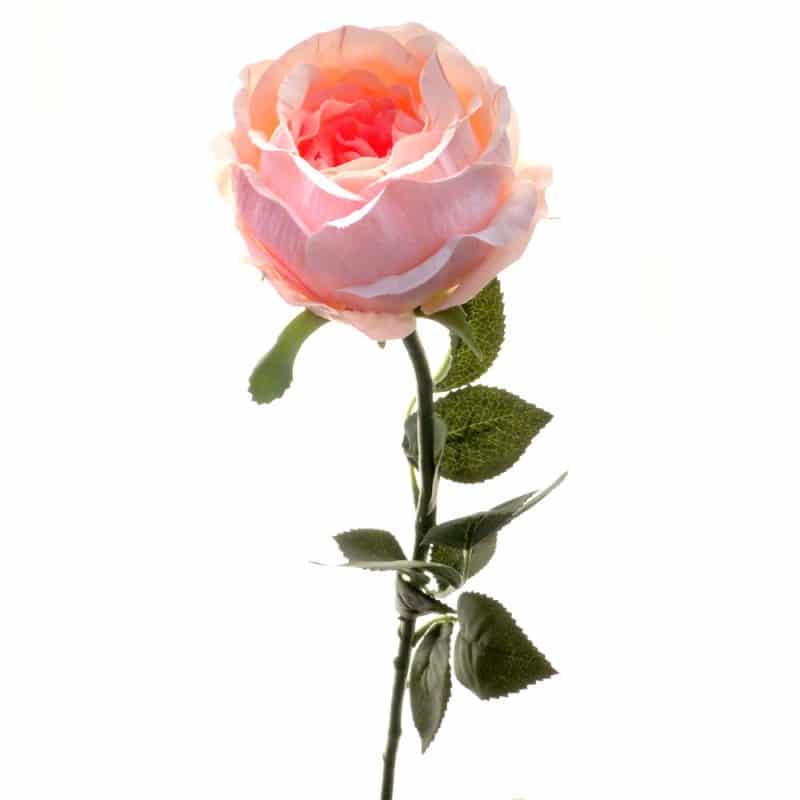 Роза Престиж шиповник ярко-розовая 68 см